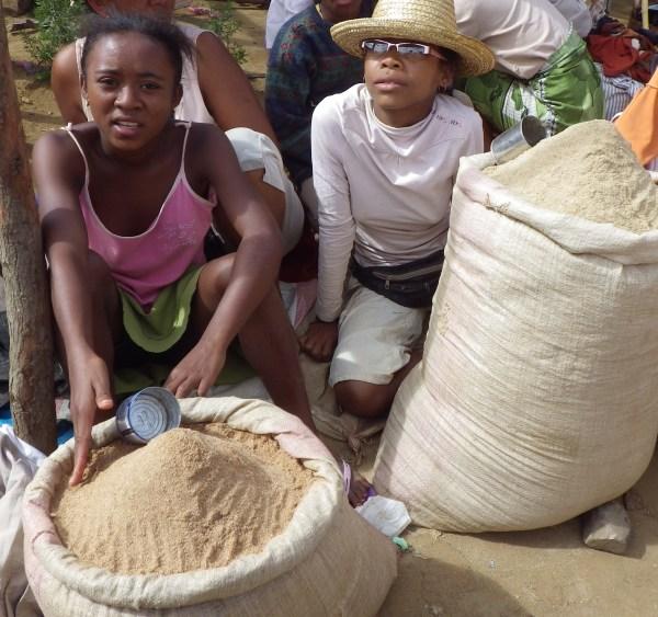 マダガスカルの米ぬか販売