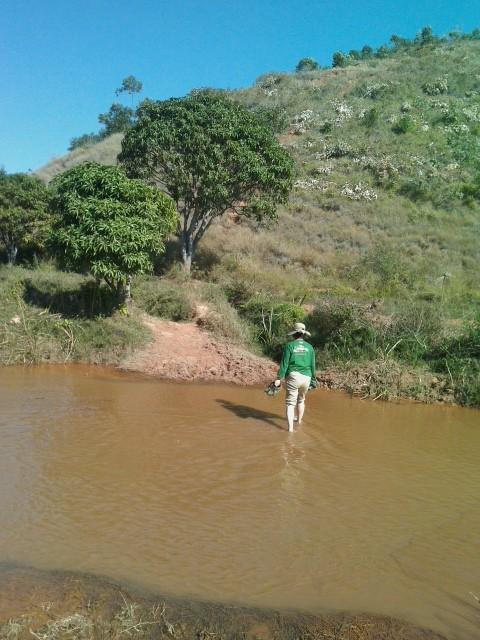歩いて川を渡る
